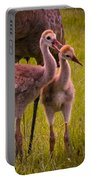 Sandhill Cranes Playing Portable Battery Charger