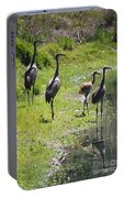 Sandhill Family By The Pond Portable Battery Charger