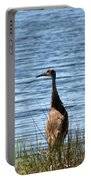 Sandhill Portable Battery Charger
