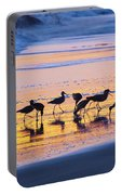 Sandpipers In A Golden Pool Of Light Portable Battery Charger