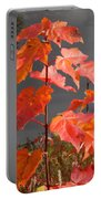 Sapling By The Pond Portable Battery Charger