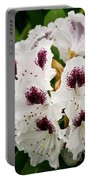 Sappho Rhododendron Portable Battery Charger