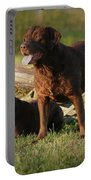 Sarah And Remington 2934_4 Portable Battery Charger