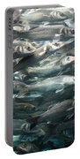 Sardines 1 Portable Battery Charger