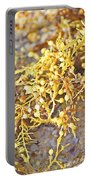 Sargassum Seaweed Portable Battery Charger
