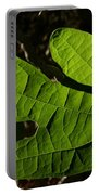Sassafras Portable Battery Charger