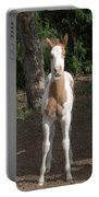 Sassy Filly Portable Battery Charger