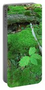 Sassy Sapling Portable Battery Charger