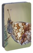 Satyr Butterfly On Blade Of Grass Portable Battery Charger