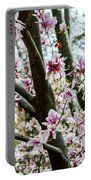 Saucer Magnolias In Central Park Portable Battery Charger