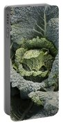 Savoy Cabbage In The Vegetable Garden Portable Battery Charger by Carol Groenen