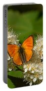 Scarce Copper 2 Portable Battery Charger