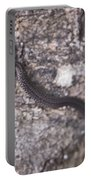 Scared Barter Snake Portable Battery Charger
