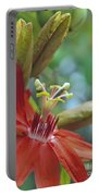Scarlet Flame Passiflora  Portable Battery Charger