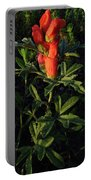Scarlet Globemallow Portable Battery Charger