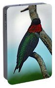 Scarlet Gorget - Ruby-throated Hummingbird Portable Battery Charger