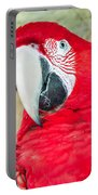 Scarlet Macaw Face Portable Battery Charger
