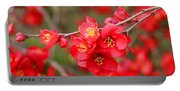 Scarlet Quince Blooms Portable Battery Charger