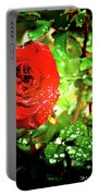 Scarlet Raindrops Portable Battery Charger