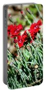 Scarlet Red Dianthus Portable Battery Charger