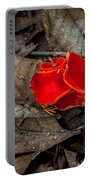 Scarlet Underfoot Portable Battery Charger