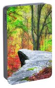 Scenic View Portable Battery Charger