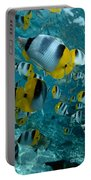 School Of Butterflyfish Portable Battery Charger