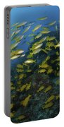 School Of Yellow Snapper, Great Barrier Portable Battery Charger