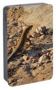 Schreiber's Fringe-fingered Lizard Portable Battery Charger