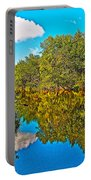 Schroon River Reflection In The Adirondacks-new York Portable Battery Charger