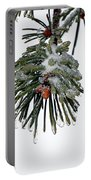 Scots Pine And Ice Portable Battery Charger