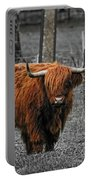 Scottish Highlander Portable Battery Charger