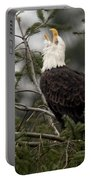 Screamin Eagle Portable Battery Charger