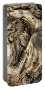Screech Owl In Cavity Nest Portable Battery Charger