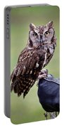 Screech Owl Perched Portable Battery Charger by Athena Mckinzie