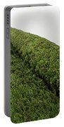 Sculpturesque Greenery - Three Cypress Trees Chiseled Against The Sky Portable Battery Charger
