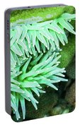 Sea Anemone Portable Battery Charger