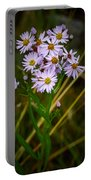 Sea Aster Portable Battery Charger