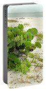 Sea Grapes Portable Battery Charger