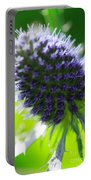 Sea Holly Portable Battery Charger