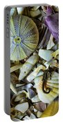 Sea Horse And Sea Star Portable Battery Charger