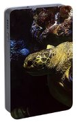 Sea Life Portable Battery Charger