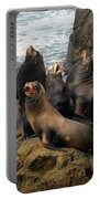Sea Lion Chorus Portable Battery Charger