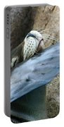 Sea Lion Itch Portable Battery Charger