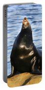 Sea Lion Sing Portable Battery Charger