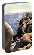Sea Lions On Rock Pier Portable Battery Charger