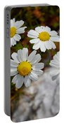 Sea Mayweed Portable Battery Charger