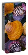Sea Shells And Sea Glass Portable Battery Charger