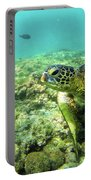 Sea Turtle #2 Portable Battery Charger