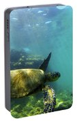 Sea Turtle #5 Portable Battery Charger